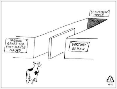 same-slaughterhouse
